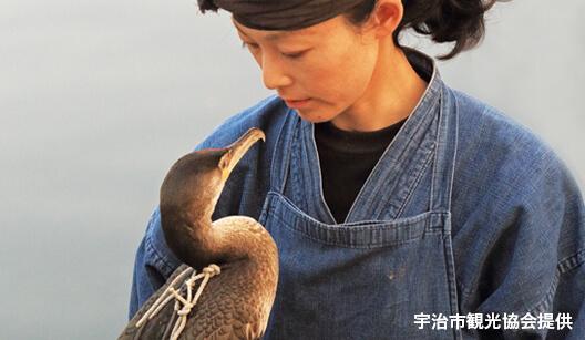 宇治川の鵜飼漁